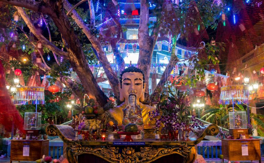 Купить тур во Вьетнам на Новогодние праздники